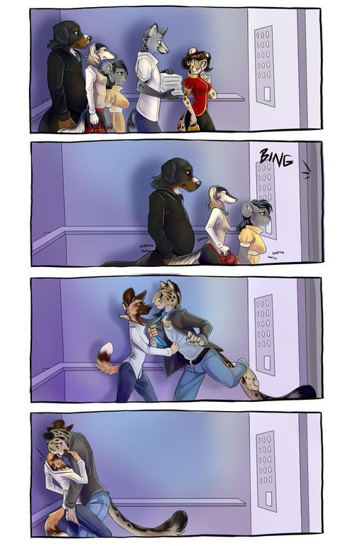 [Demicoeur] 3 Dog Night - Elevator