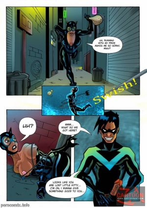 Justice League– Nightwing and Catwoman